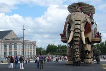 L'éléphant du web et le Grand éléphant nantes