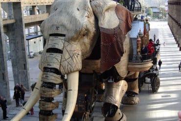 éléphant-du-web-nantes