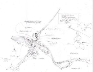 schéma-colibri-machine-de-lile-elephant-du-web