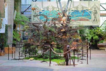 elephant-du-web-arbre-hérons