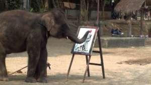 éléphant-peinture-web